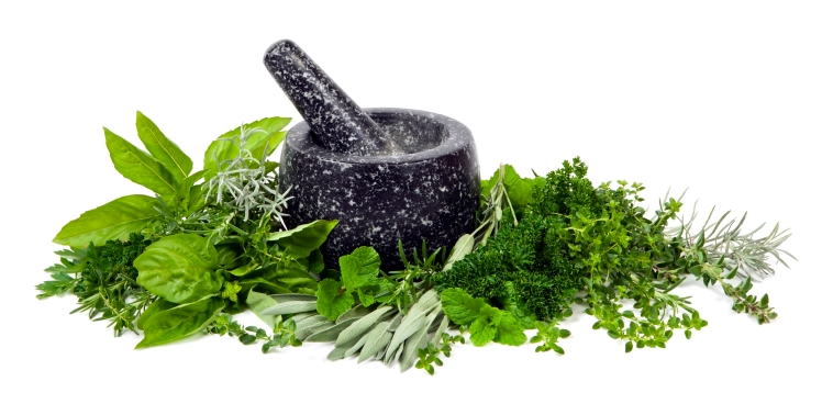 Mortar and Pestle with Fresh Herbs over White